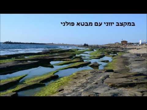 שיר ישראלי