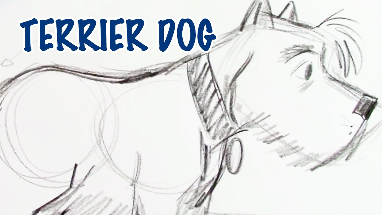 How To Draw A Terrier Dog (step By Step) #howtodraw #draw