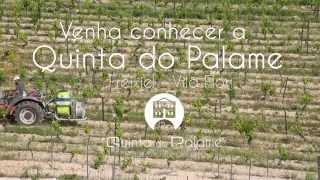 Agricultura na Quinta do Palame