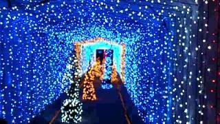 Maebashi Japan  city photo : Illumination at The Gunma Flower Park - Maebashi, Japan