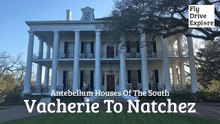 Natchez (MS) United States  city pictures gallery : Vacherie to Natchez - Antebellum Houses of the South