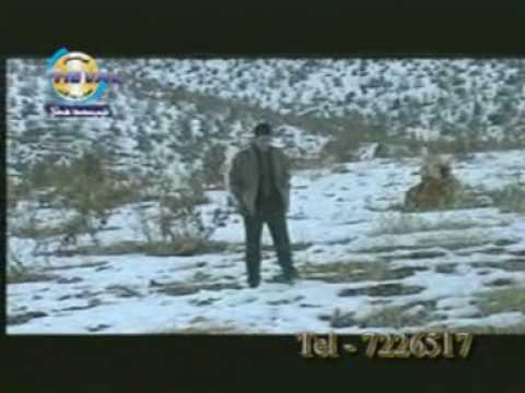 duhok kurdistan mosic stran video (видео)