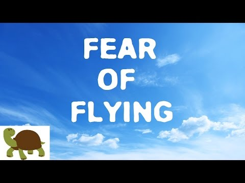 What It s Like to Fly When You re Afraid of