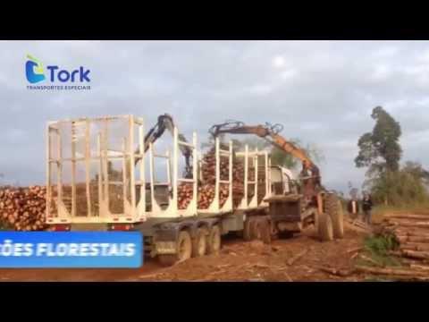 A TORK TRANSPORTE DE CARGAS ESPECIAIS é uma empresa…