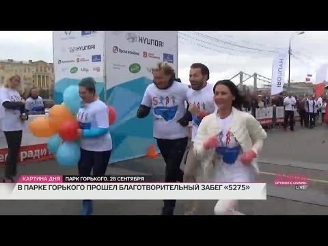 Наталья Толстая - Благотворительный забег 5275. Как это было
