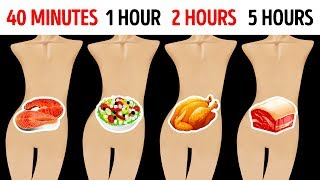 Video How Long Your Favorite Food Stays In Your Stomach MP3, 3GP, MP4, WEBM, AVI, FLV November 2018