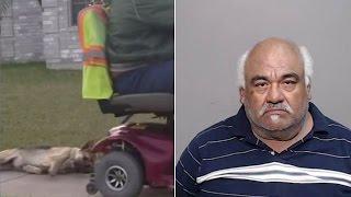 Przywiązał psa do swojego elektrycznego wózka i ciągnął go za sobą. Tymczasem prędko tego pożałował!