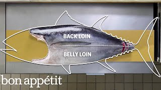 Video How To Butcher a Whole Tuna: Every Cut of Fish Explained | Handcrafted | Bon Appétit MP3, 3GP, MP4, WEBM, AVI, FLV Desember 2018