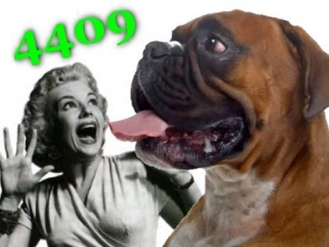 4409 -- Dueling Douche Bags! (original) HQ