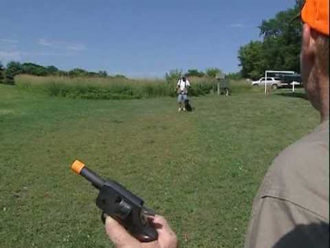 Tips on gun training