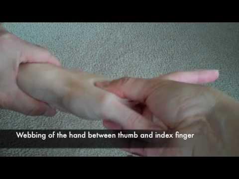 我嘗試做很奇怪的「對著拇指吹氣」動作後,接著身體就感受到很明顯的奇妙變化…