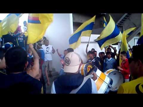 Ritual del Kaoz América vs Pachuca 03/11/12 HD - Ritual Del Kaoz - América