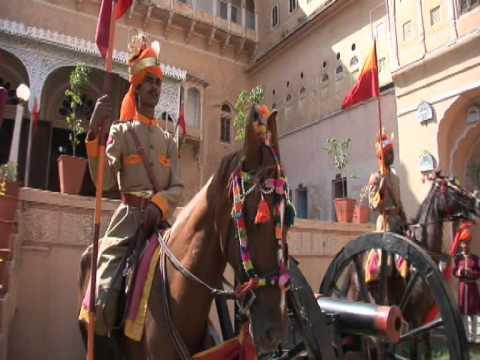 Marwari Horse Dundlod (Dundlod)