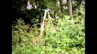 2012 Garden Full Season Time-Lapse