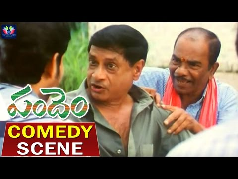 Video Pandem Telugu Movie Comedy Scenes | Jagapati Babu | Kalyani | Sabhapati | Chakri | TFC Comedy download in MP3, 3GP, MP4, WEBM, AVI, FLV January 2017
