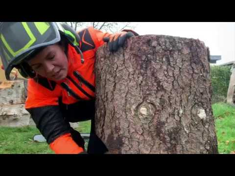 How To Cut Down A Tree With FemaleLumberjack