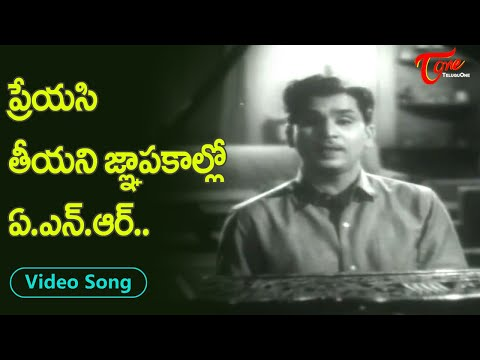 Akkineni Nageswara Rao Evergreen Hit Love Song | Telugu Heart touching Songs | Old Telugu Songs