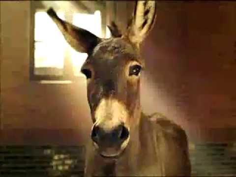 "Budweiser Super Bowl Commercial - ""Born a Donkey"""