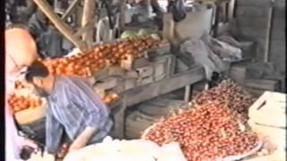 دانلود موزیک ویدیو شهر ما عطا