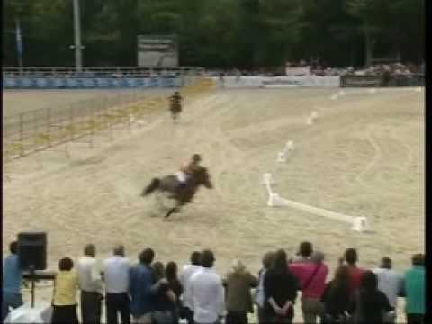 III Feira do Cavalo de Ponte de Lima - 2009 | Parte 1