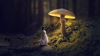 Video Glowing Mushroom - Photoshop Fantasy Manipulation Tutorial MP3, 3GP, MP4, WEBM, AVI, FLV Mei 2019