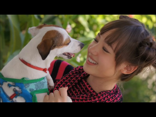 Carly Rae Jepsen Call Me Maybe Mp3 Download Waptrick