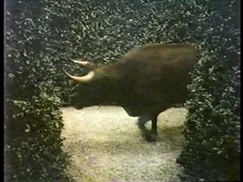 Merril Lynch Commercial - 1984