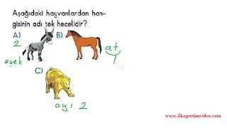 1. sınıf türkçe dersi hece bilgisi soru çözümleri