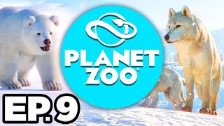 Planet Zoo: Arctic Pack Ep.9 - ARCTIC WOLF & BISON FUN FACTS, LAST REINDEER! (Gameplay / Let's Play)