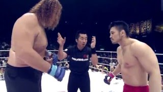 Video Top 5: Pride FC MMA Freakshow Fights Highlight HD 2016 MP3, 3GP, MP4, WEBM, AVI, FLV September 2019