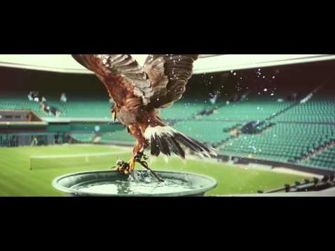 Rufus – The Real Hawk-Eye | Stella Artois