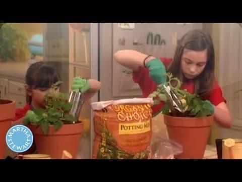 Kid-friendly Gardening with Martha Stewart – Martha Stewart