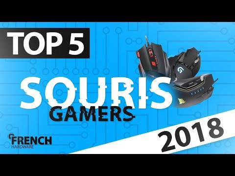 TOP 5 DES SOURIS GAMER 2018!