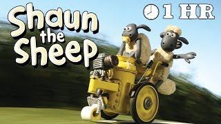 Video Shaun the Sheep - Season 2 - Episode 01 -10 [1HOUR] MP3, 3GP, MP4, WEBM, AVI, FLV Juni 2018