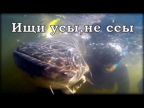 Ссать охота видео фото 476-236
