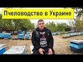Пчеловодство в Украине Сегодня