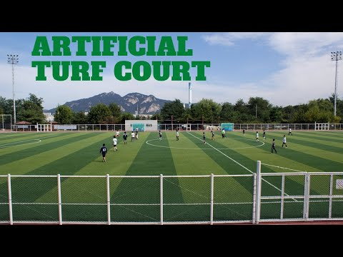 Artificial Turf Court Business Plan | Investment & Expected Income | Business Plans and Ideas