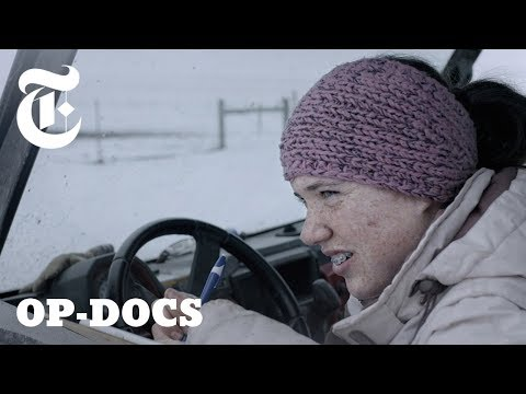 Calving Season: Life and Death On a Montana Cattle Ranch | Op-Docs (видео)