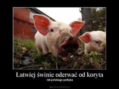 Tekst piosenki Piersi - Pobłogosław biednym po polsku