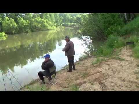 Видео отчет о рыбалке с ночи на утро 10 июня