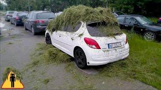 Koleś obsypuje samochody trawą w Warszawie