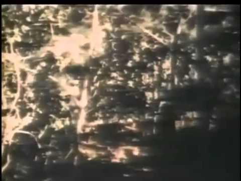 1/4)溪生戰役(Khe Sanh,越戰,1968春節攻勢之一;中字全