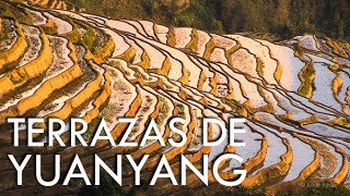Yuanyang China  City new picture : Las increíbles terrazas de arrozales de Yuanyang - Yunnan - China misteriosa