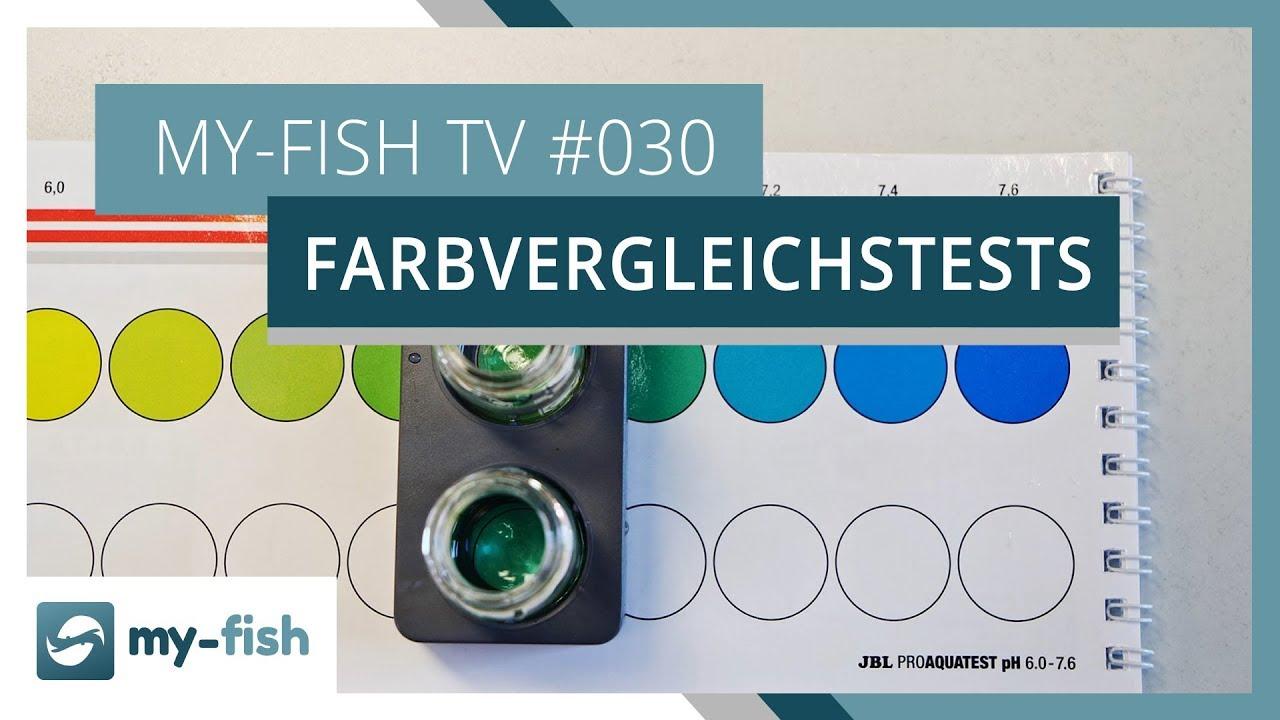 my-fish TV - Deine Nr. 1 Anlaufstelle für alle Themen rund um die Aquaristik 34