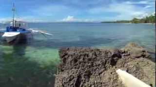 Alcoy (Cebu) Philippines  city photos : Scuba Dive Alcoy, Cebu in the Philippines with Dive point Alcoy