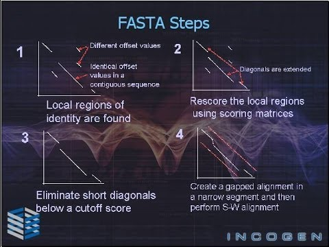 Bioinformatics Part 5 FASTA Algorithm