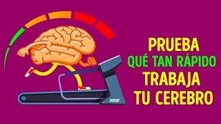 Video Test de tiempo de reacción: ¿qué tan rápido es tu cerebro? MP3, 3GP, MP4, WEBM, AVI, FLV September 2019