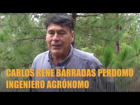 ENTREVISTA INGENIERO AGRÓNOMO CARLOS RENE BARRADAS PERDOMO