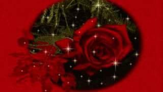 Abdullah Akbulak - Hasret Gülleri