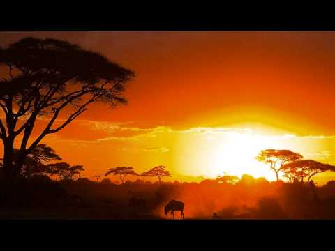 The Mood Drum – Djembe Nights ( Chill-Out Ambient )